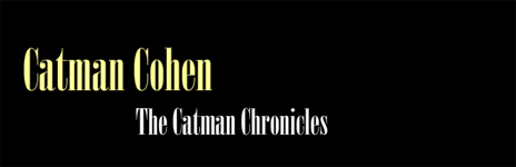 catman cohen chronicles songs of feeling